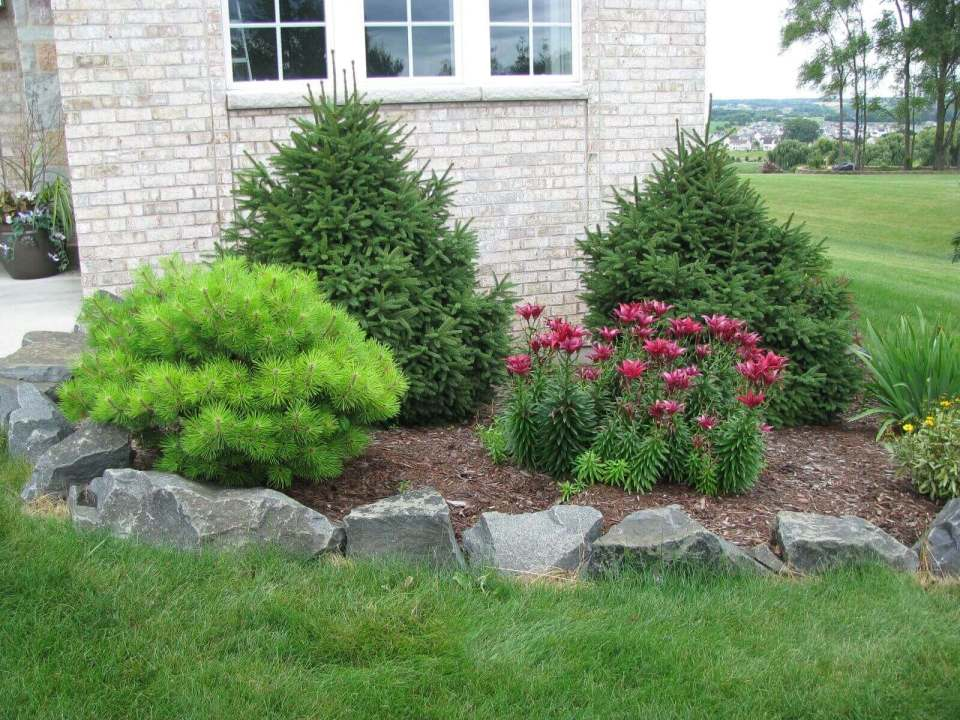 DIY Lawn Edging Ideas For Beautiful Landscaping: Bushes and Flowers with Natural Rock Edges