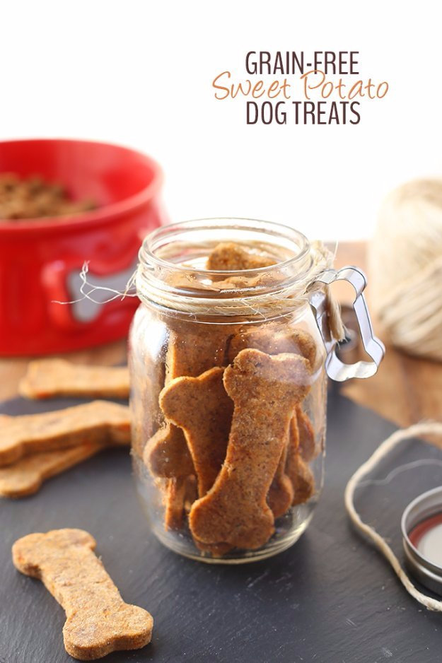 Grain Free Sweet Potato Dog Treats