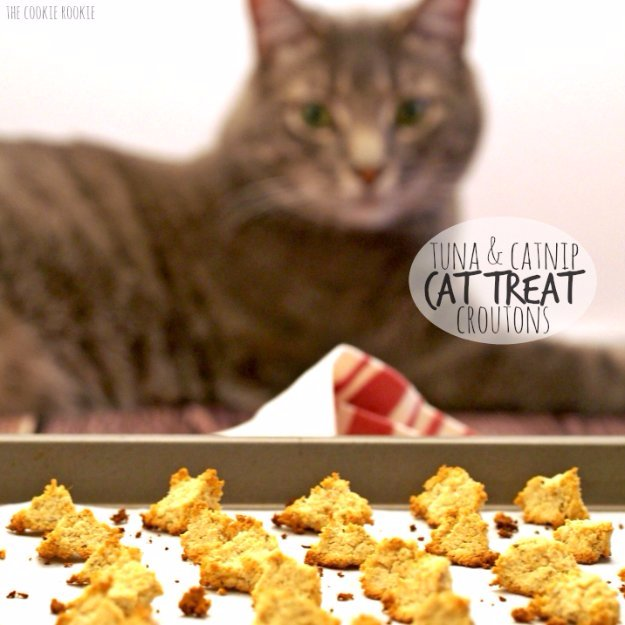 Tuna And Catnip Cat Treat Croutons