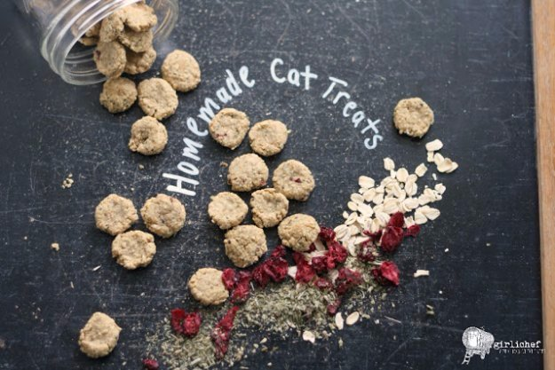 Homemade Chicken & Cranberry Cat Treats