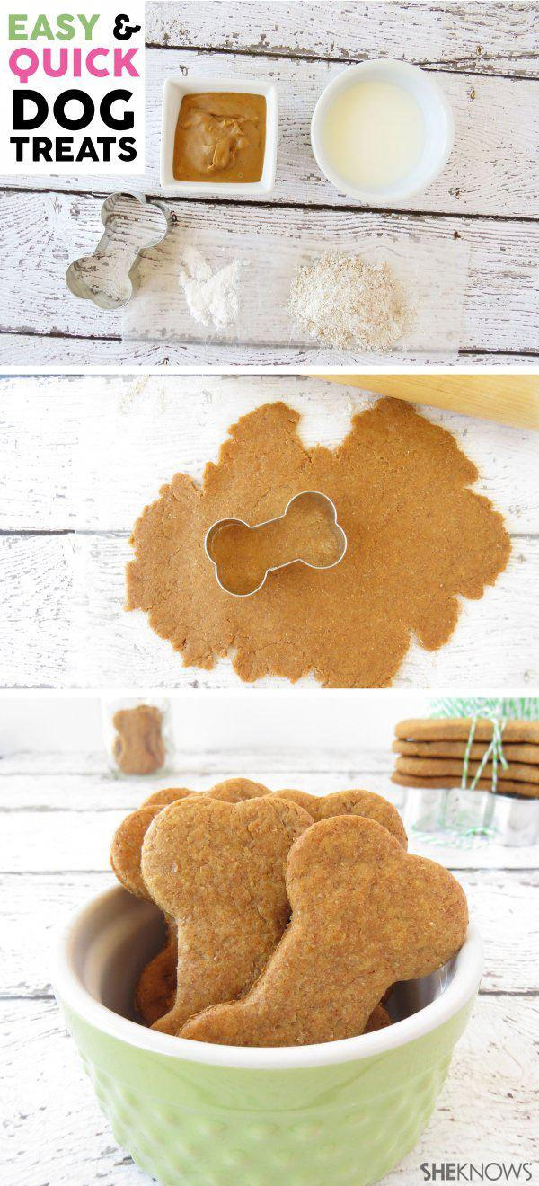 Easy DIY Dog Treats