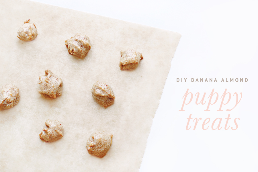 Banana Almond Puppy Treats Recipe
