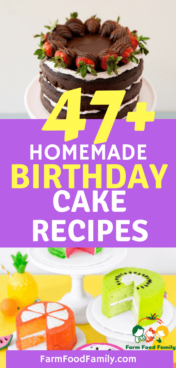 47+ Best Homemade Birthday Cake Recipes For Your Kids