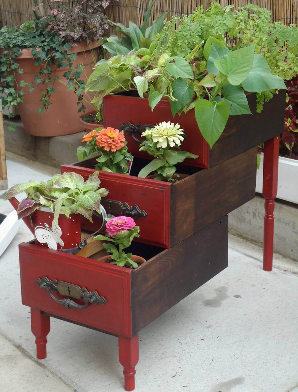 Graduated Drawers with Different Flowers
