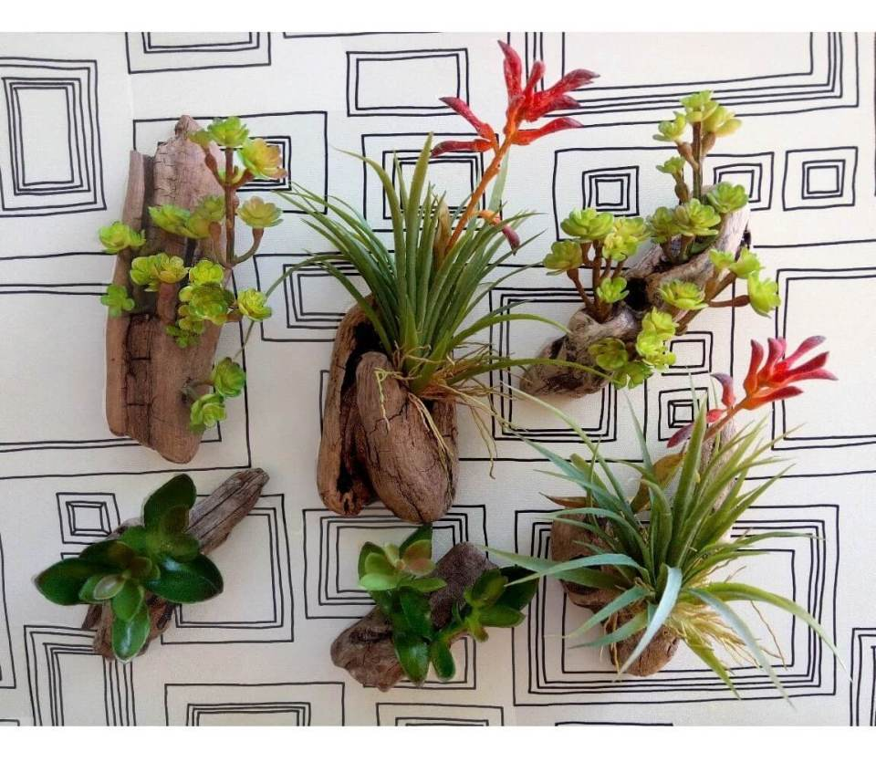 Create a Tiny Wall Garden