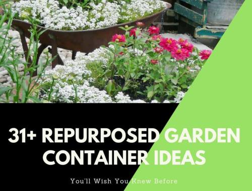 31+ Creative Repurposed Garden Container Ideas You Can Create on a Budget