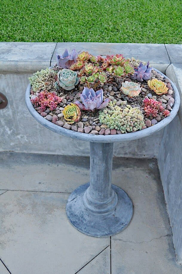 Succulent Garden Ideas: Rolling Along With My Wheelbarrow