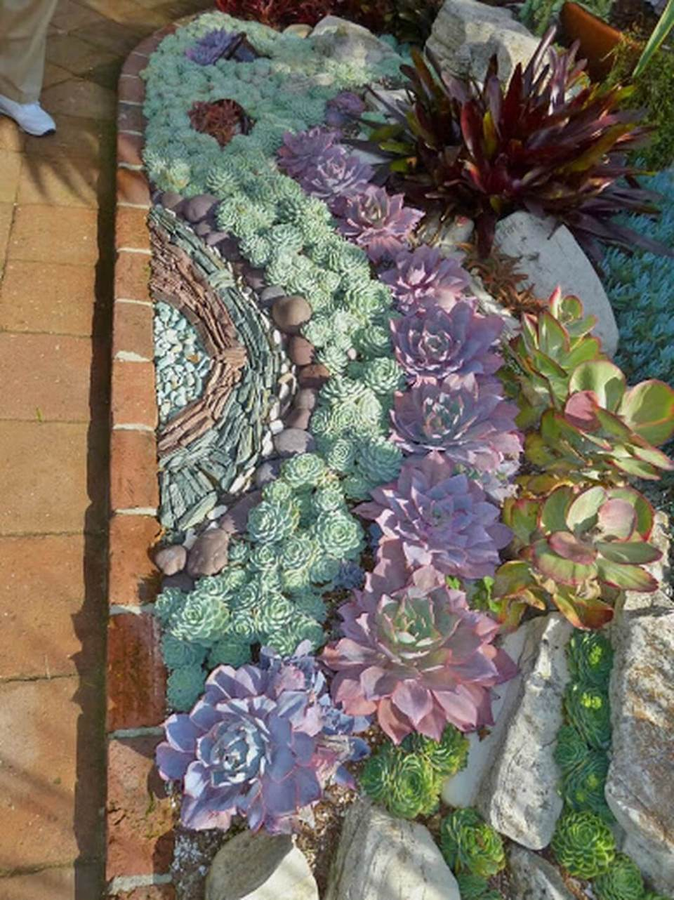 Succulent Garden Ideas: By A River Stream