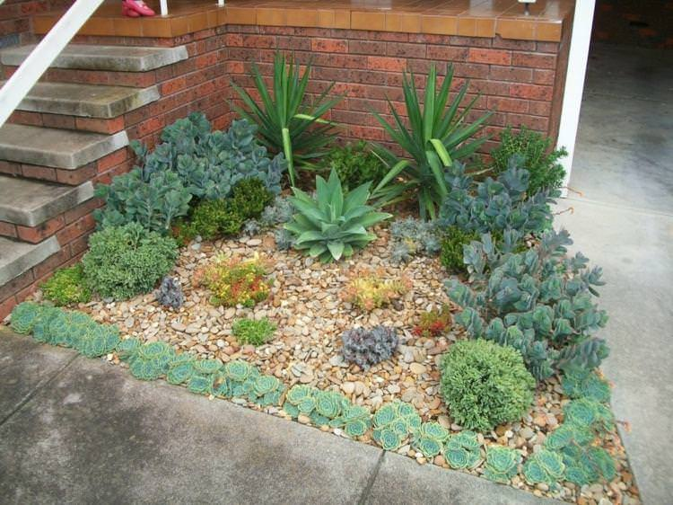 Succulent Garden Ideas: Small garden embellished by some succulents