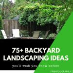 75+ Backyard Landscaping Ideas & Trending Designs