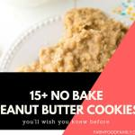 15+ Healthy No Bake Peanut Butter Cookies