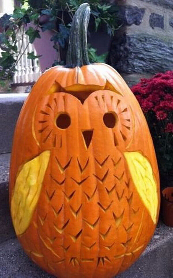 DIY Pumpkin Carving Ideas: What a Hoot!