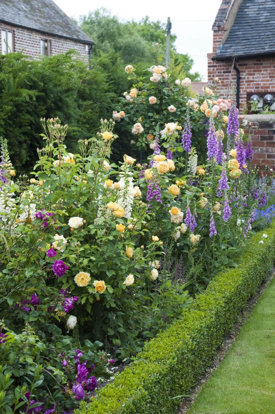 Tall Border with Roses and Snapdragons