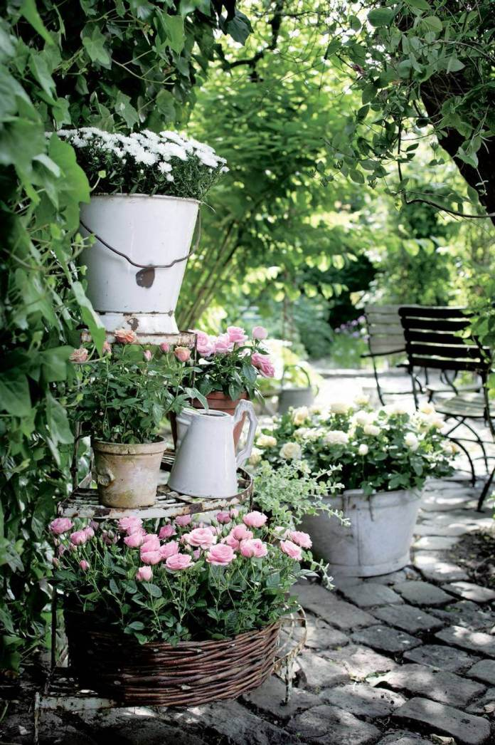 Tiered Potted Roses in Planters