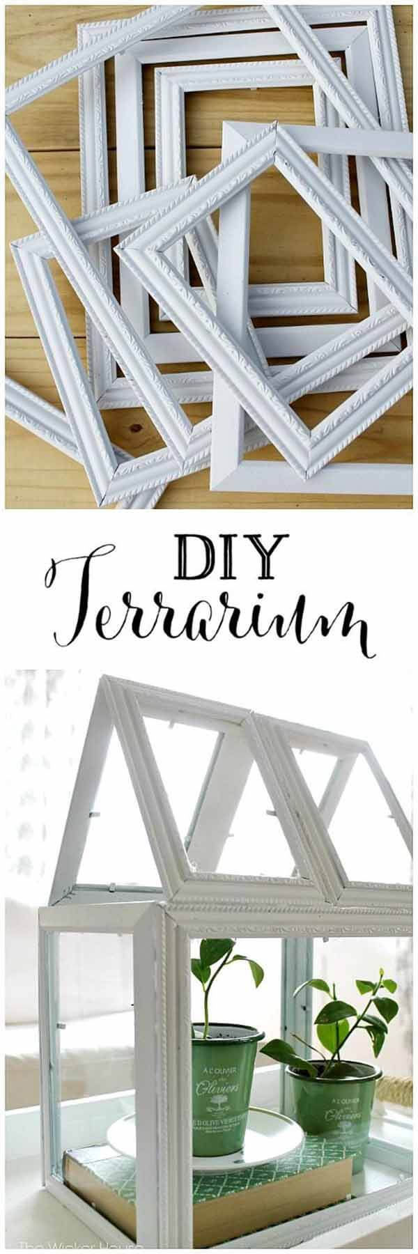 A Small, Framed Green House Terrarium | Build a beautiful outdoor greenhouse | Creative Greenhouse DIY plans