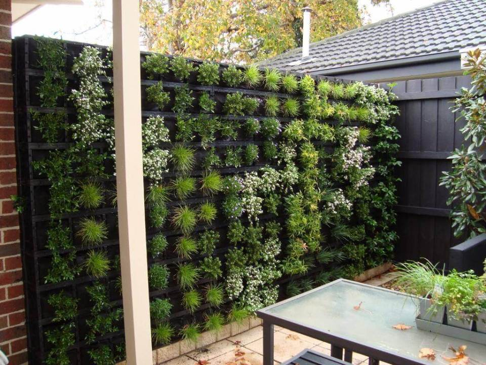 Green Wall Backyard Planter Project
