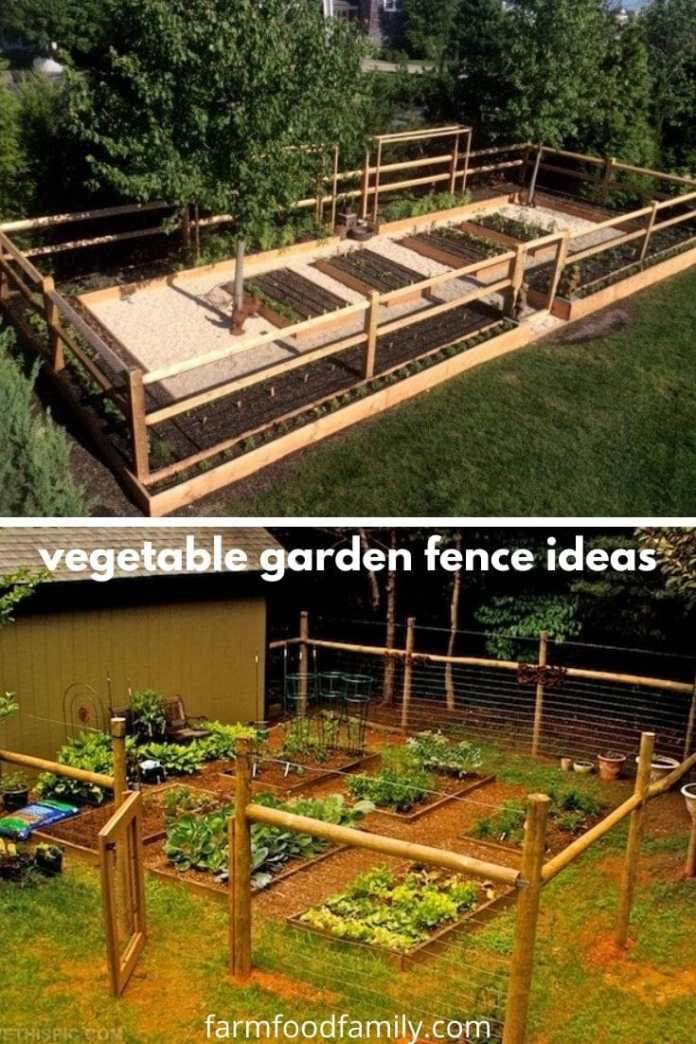 Vegetable garden fence ideas and designs
