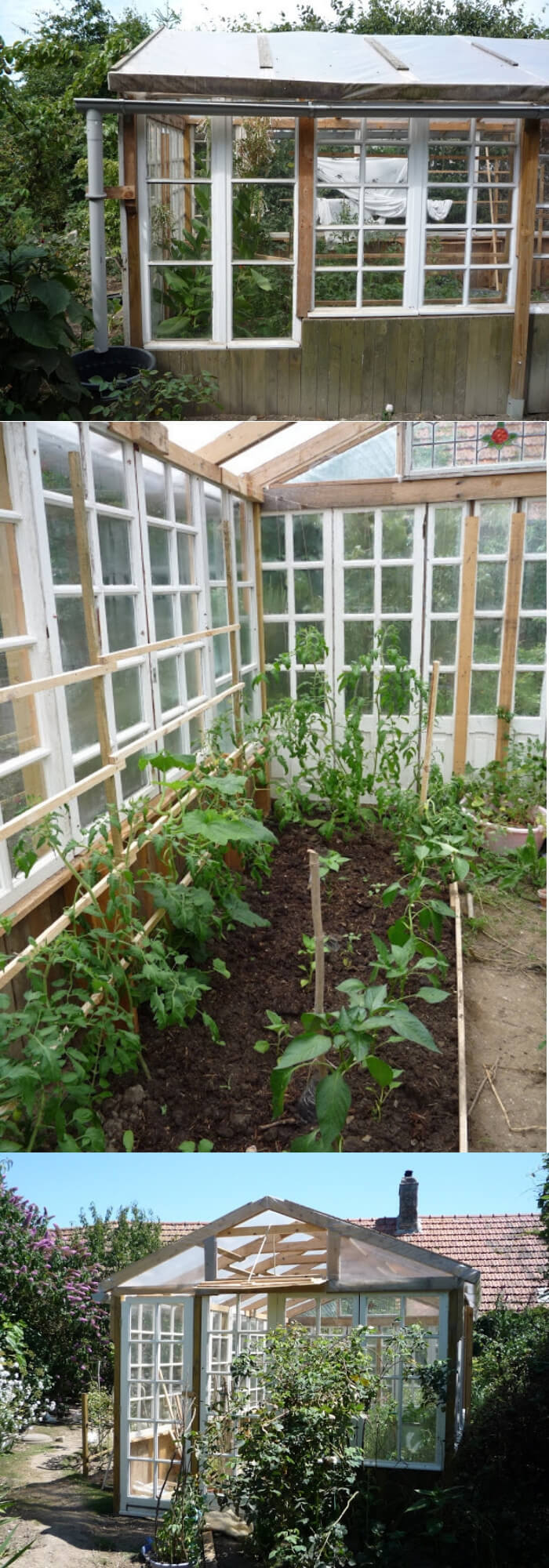 Low cost glass greenhouse from free recuperated windows