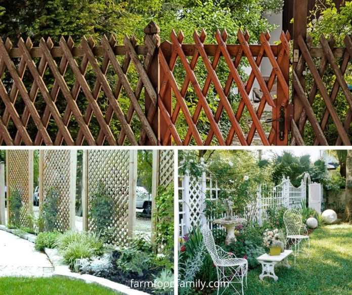 Garden trellis fence ideas and designs