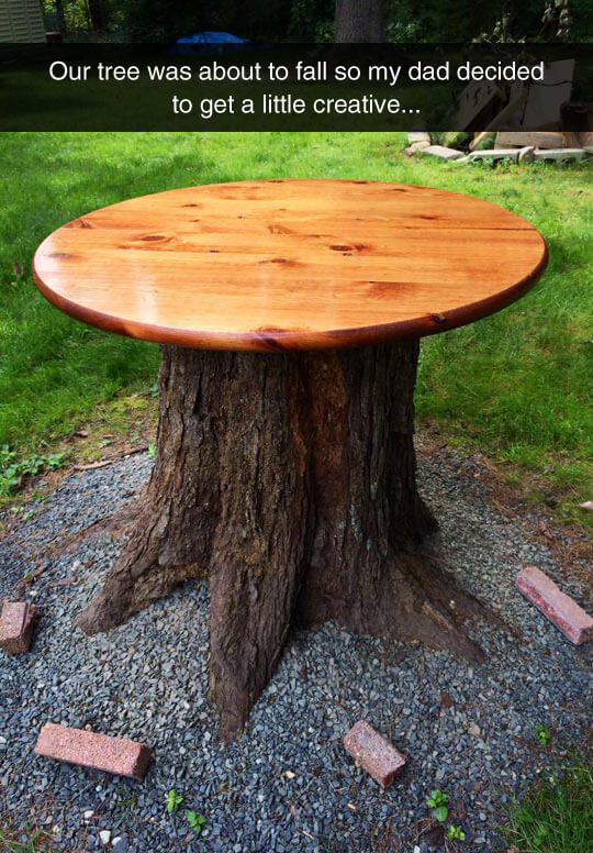 Very impressive dad - Tree Stump Outdoor Table | Tree Stump Decorating Ideas | How To Decorate a Tree Stump In Landscape