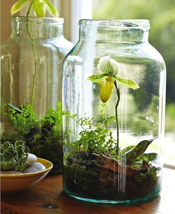 Mason Jar Herb | Smart Mini Indoor Garden Ideas DIY - FarmFoodFamily.com