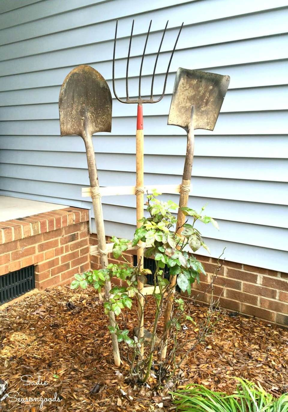 Garden Trellis from Vintage Yard Tools | Up-cycled Trellis Ideas For Garden