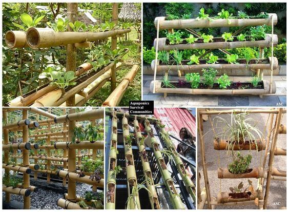 Bamboo Planter | Stunning Bamboo Craft Projects | FarmFoodFamily.com