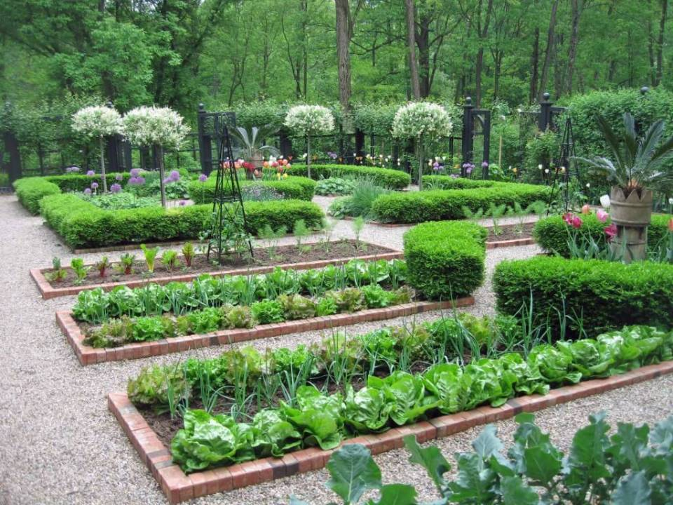 An extraordinary potager in a private New Jersey garden | Edging Plants for Kitchen Gardens - FarmFoodFamily.com