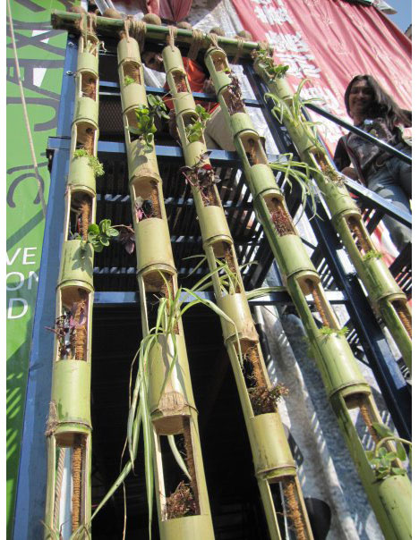 Bamboo Grow Wall | Stunning Bamboo Craft Projects | FarmFoodFamily.com