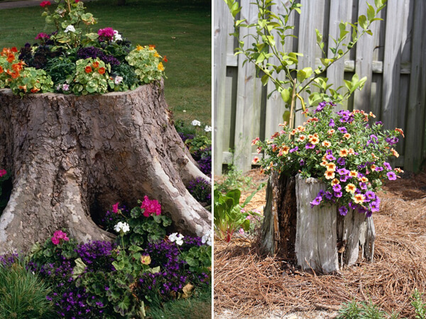 Turning Old Tree Stumps Into Garden Decorations | Low-Budget DIY Garden Pots and Containers