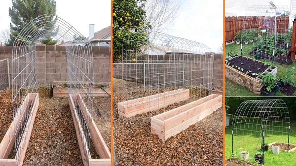 DIY Raised Bed and Trellis | Up-cycled Trellis Ideas For Garden