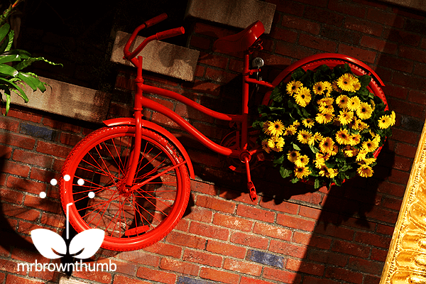 A charming antique bicycle planted | Bicycle Garden Planter Ideas For Backyards | FarmFoodFamily