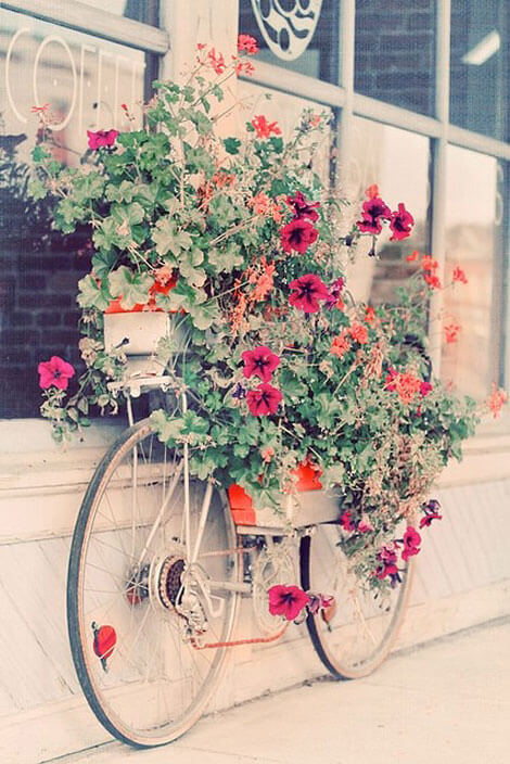 Bicycle With Just Tires Peeping Out | Bicycle Garden Planter Ideas For Backyards | FarmFoodFamily