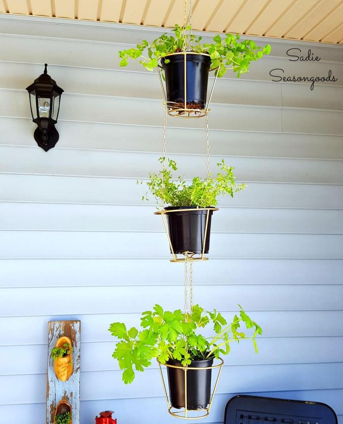 Lampshades Repurposed Into Hanging Herb Baskets | Low-Budget DIY Garden Pots and Containers