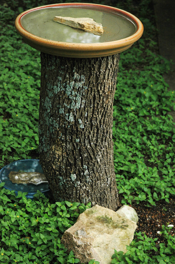 Bird Bath | Tree Stump Decorating Ideas | How To Decorate a Tree Stump In Landscape