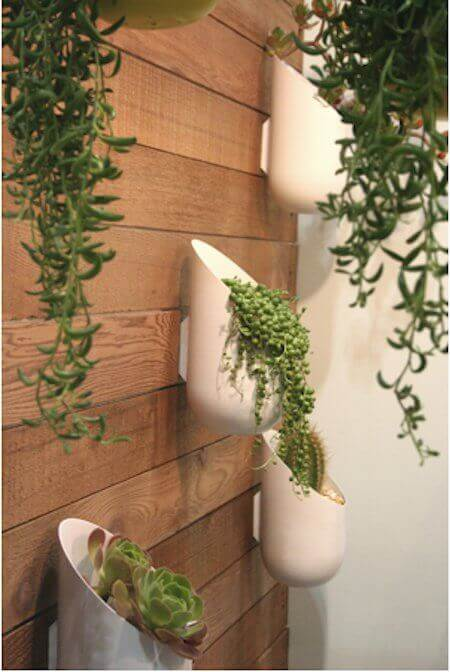 Succulent in Wall Planters | Creative Plastic Bottle Vertical Garden Ideas - FarmFoodFamily.com