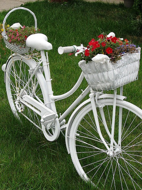 Reuse old white bicycle flower stand | Bicycle Garden Planter Ideas For Backyards | FarmFoodFamily