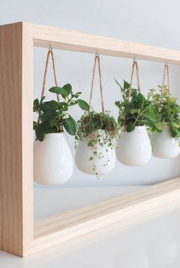 Hanging Herb Garden | Smart Mini Indoor Garden Ideas DIY - FarmFoodFamily.com