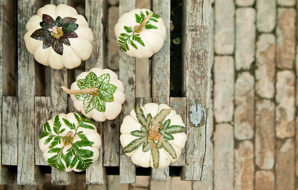 Botanical Pumpkins | DIY Fall-Inspired Home Decorations With Leaves - FarmFoodFamily