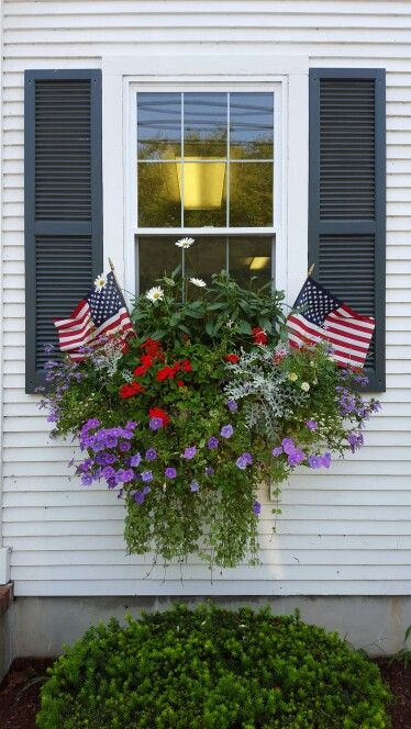 Patriotic Window Box at the Cape, Chatham   Flower Garden Ideas for Containers and Windowboxes