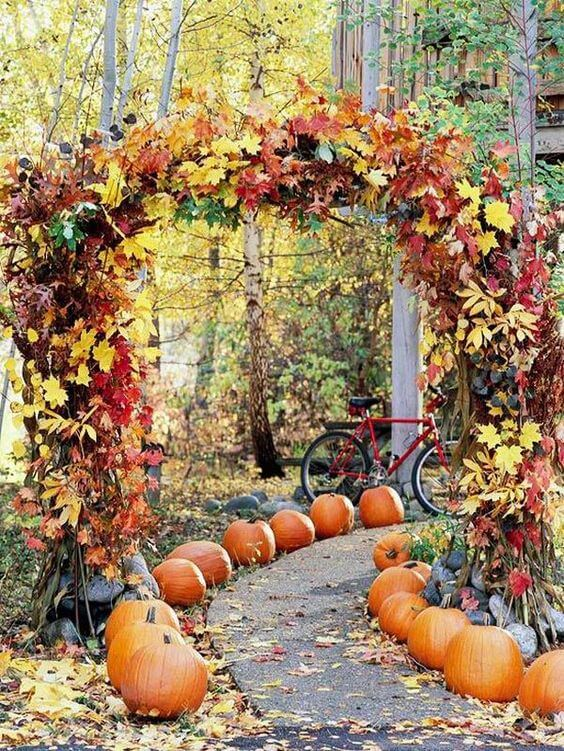 Halloween Wedding Path | Halloween Wedding Theme Ideas - Farmfoodfamily.com