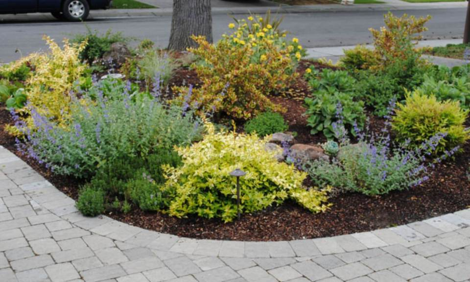 44+ Best Landscaping Design Ideas Without Grass 2020 ... on Backyard Ideas Without Grass  id=65822