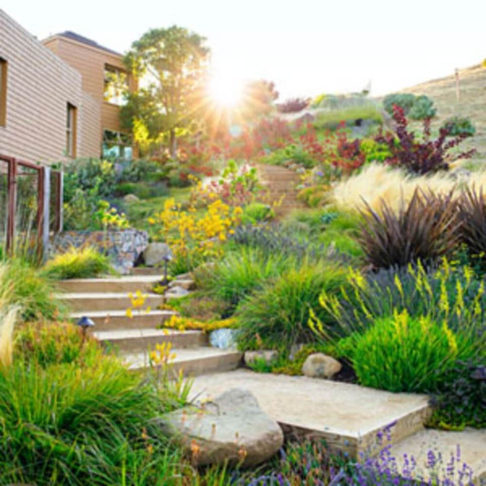 44+ Best Landscaping Design Ideas Without Grass 2019 ... on Backyard Ideas Without Grass  id=98789