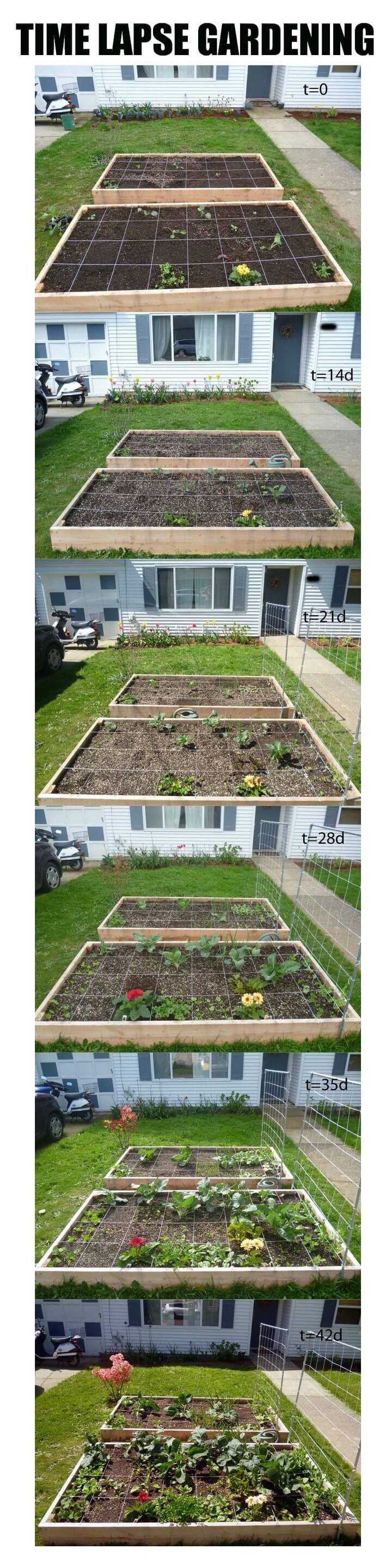 Raised Bed for under $50 | How to Build a Raised Vegetable Garden Bed | 39+ Simple & Cheap Raised Vegetable Garden Bed Ideas - farmfoodfamily.com