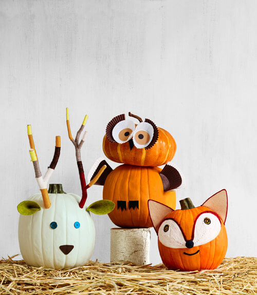 Deer, Fox, & Owl Pumpkins | No-Carve Pumpkin Decorating Ideas For This Halloween
