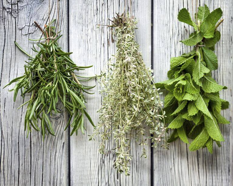 Dried Lemon Balm Uses in Crafts