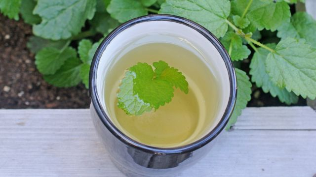 Lemon Balm Facilitates Quality Sleep
