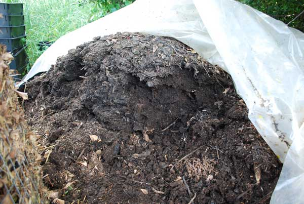 Compost Pile is Wet