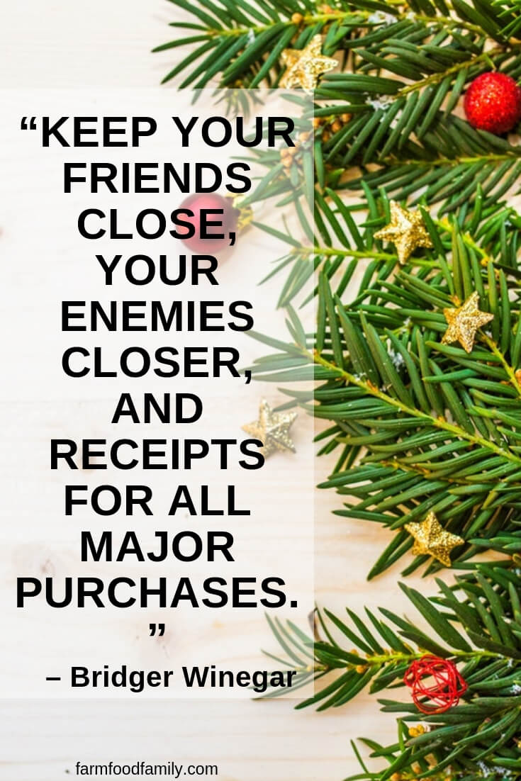 30 Funny Christmas Quotes Sayings That Make You Laugh