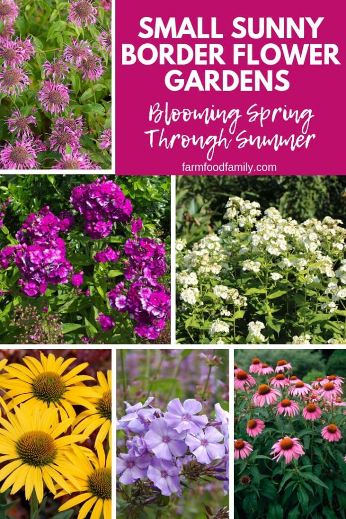 Small Sunny Border Flower Gardens Blooming Spring Through Summer